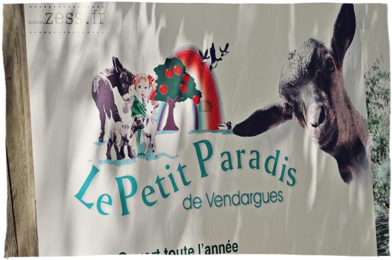 petit paradis vendargues biquette
