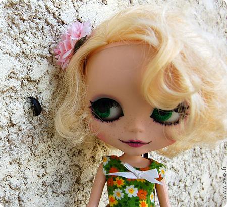 Prima Dolly Saffy (PD2S) // RBL 10-border
