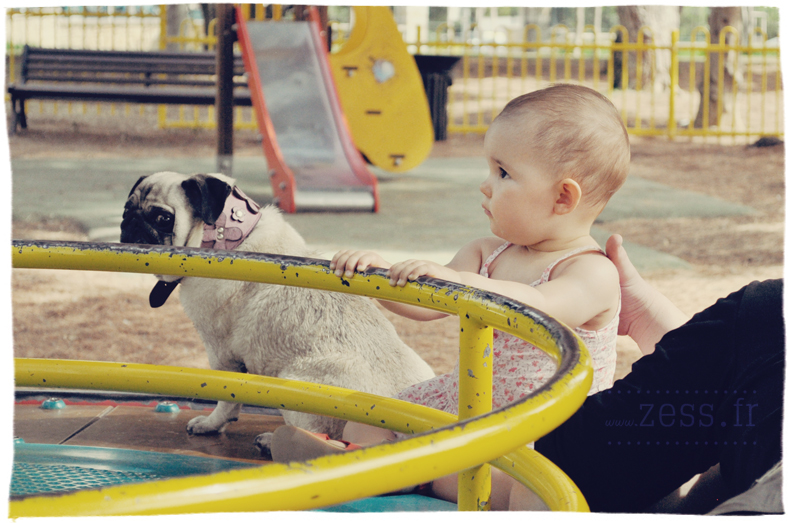 bébé carlin parc